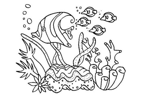 group of animals coloring page a group of fish in coral reef sea animals coloring page