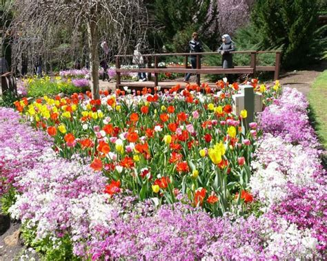 Araluen Botanical Gardens Gardensonline Araluen Botanic Park Gardens Of The World