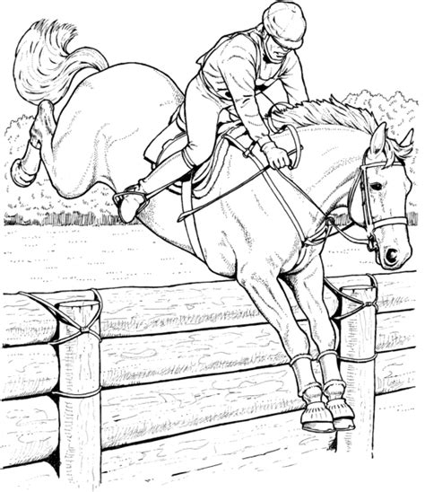 coloring pictures of real horses coloriage jeux olympiques 224 colorier allofamille