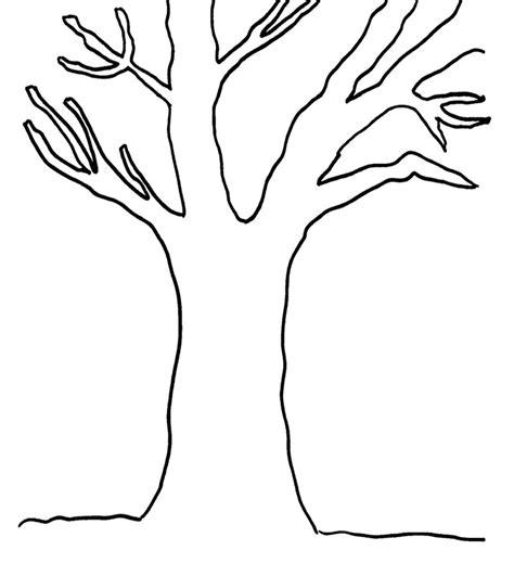 Bare Tree Template by Bare Tree Colouring In Clipart Best