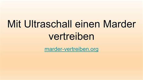 Wie Vertreibt Einen Marder 1884 by Wie Vertreibt Marder Top Marder Im Garten So