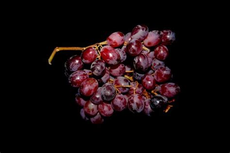 are grapes bad for dogs fruits for dogs what s and what s not for your pet 187 teacupdogdaily