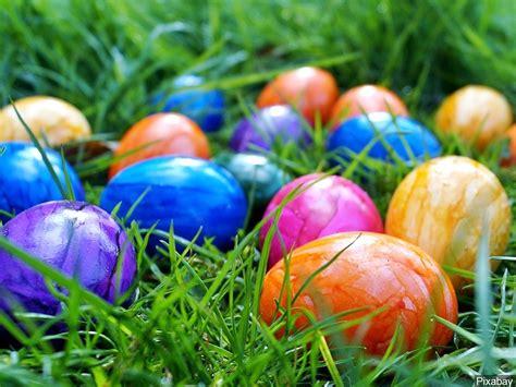 tuscaloosa s upcoming easter egg hunts