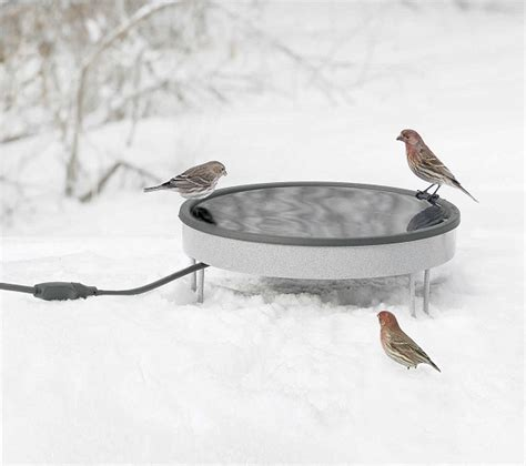 all season heated ground bird bath