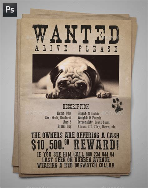 13 psd lost dog flyer templates free premium templates