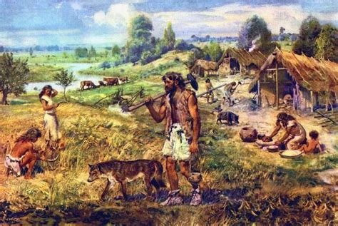 when were dogs domesticated dogs became domesticated 15 000 years ago and not 30 000 new research shows market