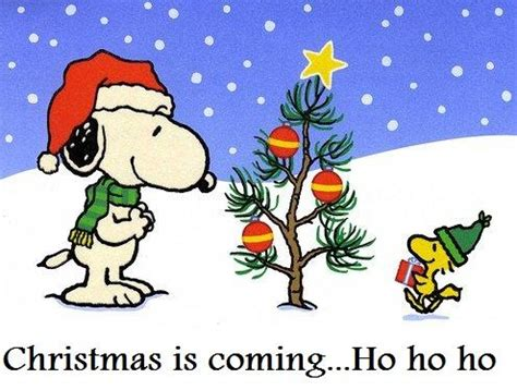 merry christmas eve snoopy  klip joint dog grooming