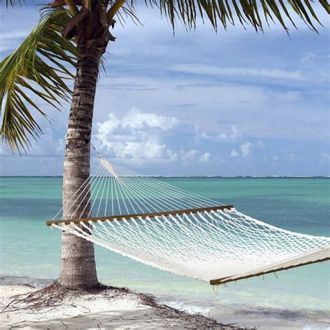 Island Bay Hammock island bay executive rope hammock tropical