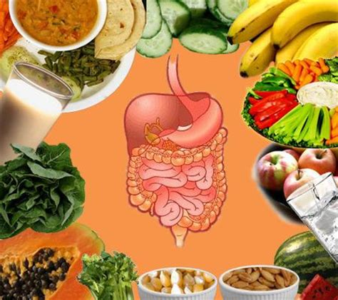 how to improve your digestive system