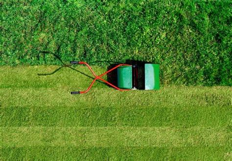 astronomers not happy with automated lawnmowers ubergizmo