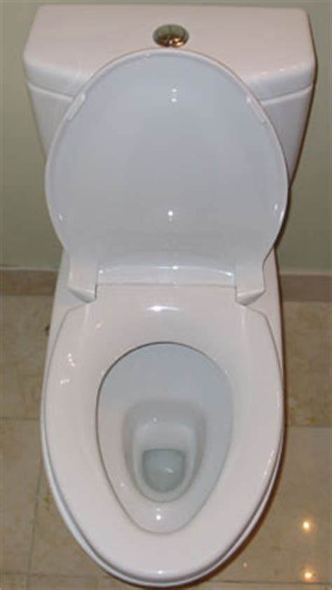 Wc Design 3397 by Toto Aquia Dual Flush Toilet Product Review Comments And