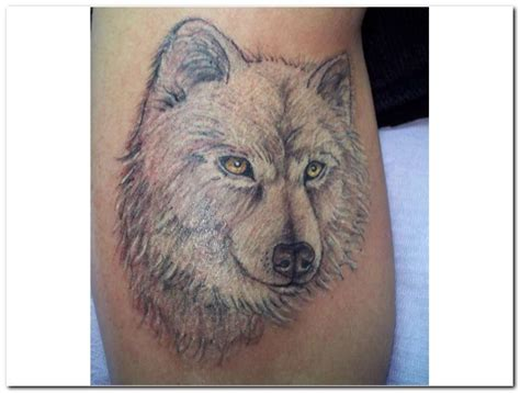 white wolf tattoo allentryupdate24 wolf designs