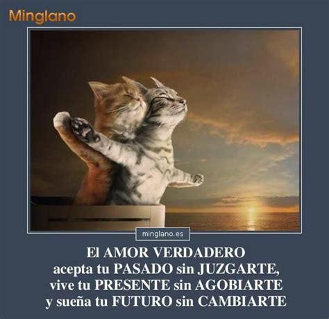 imagenes de amor verdadero frase de reflexion sobre el verdadero amor 1436082463 jpg