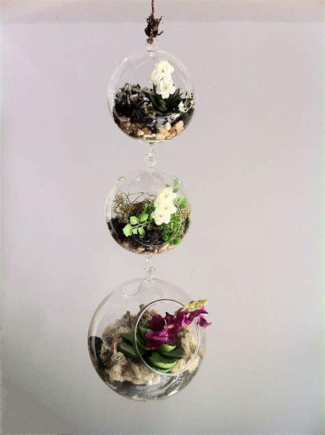 piante in vasi di vetro arredare con le piante grasse 8 idee creative da copiare