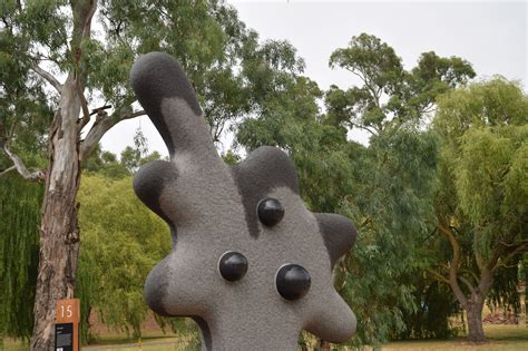 garden rocks for sale garden rocks for sale adelaide home outdoor decoration