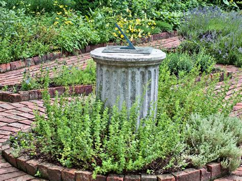 herb garden basics tips for growing a kitchen herb garden culinary herbs