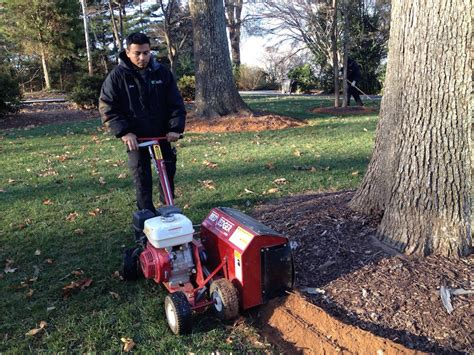 landscape bed edger how to correctly install mulch the planting tree the