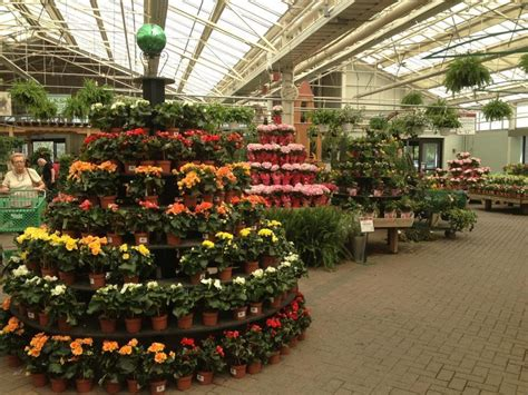 Greenhouse Garden Center by Best 25 Garden Center Displays Ideas On
