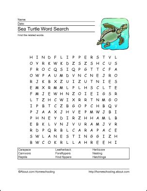 printable turtle puzzle sea turtle word search crossword puzzle and more