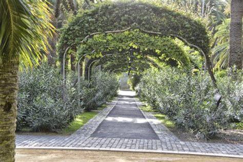 Jardin Botanical Gardens Jard 237 N Bot 225 Nico Tenerife Picture Of Botanical Gardens