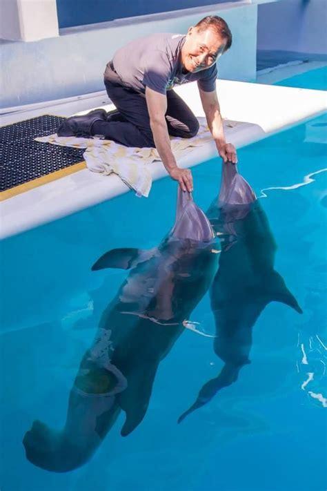 best fan for aquarium 22 best fan favorites from 2014 images on pinterest