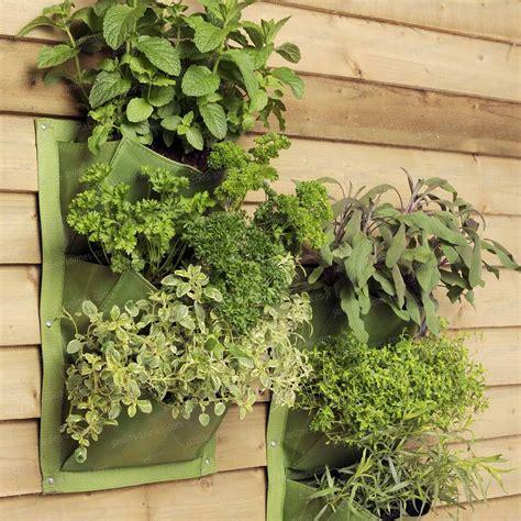 jardin de plantes aromatiques jardin vertical verti plant 3 poches pour salades aromatiques et petites plantes lot de 2 mur