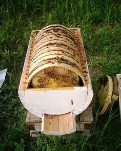 Wild Bee Hives » Home Design 2017
