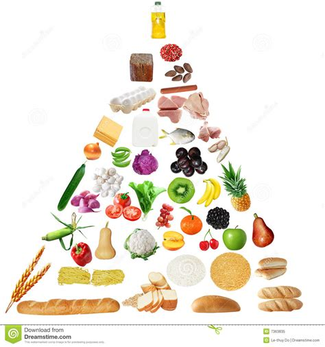 healthy fats en espanol senior food pyramid stock image image of diet fats