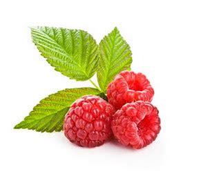Benihbijibibit Buah Raspberry Mix Import produk cina mycinaicecream page 2