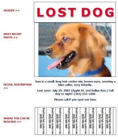 Lost Pet Flyer Template by Lost And Found Flyer Humane Society Of Broward