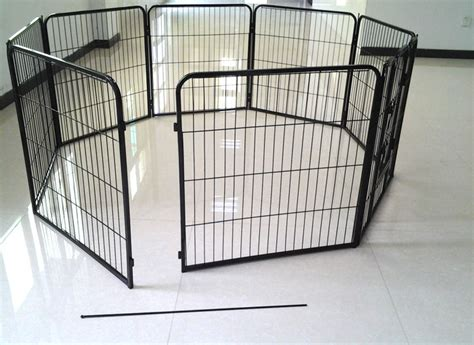 small squirrel cage fan small squirrel cage fans buy small squirrel cage fans