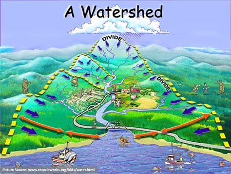 Water Shed Definition by Watershed Definition What Is