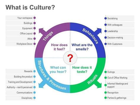 what is a free diagram chapter 15 organizational culture organizational culture