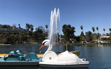 swan boats in echo park 31 fun things to do this spring in l a 2018