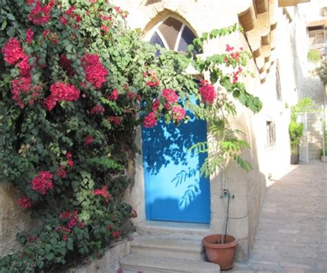 mediterranean climbing plants mediterranean style front door mocha casa
