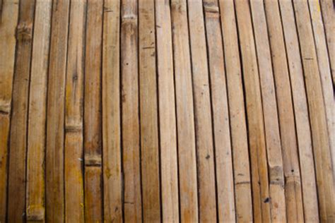 bambus teppich bambusteppich reinigen so geht s