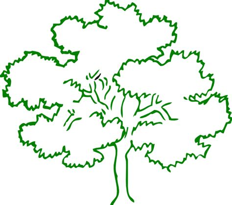 Tree Outline Green oak tree green outline frame clip at clker vector clip royalty free