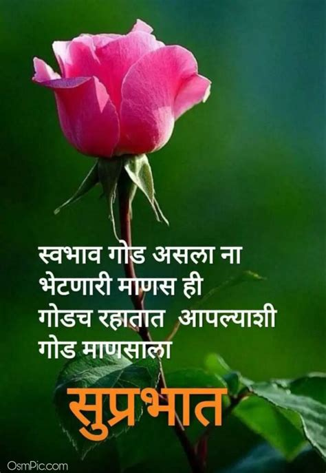 latest good morning marathi images quotes status msgs
