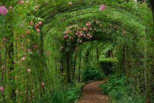 Beauty Garden Beauty Canopy Flowers Gardeb Garden Gardens Image