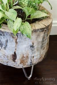 modern tree stump planter not just a