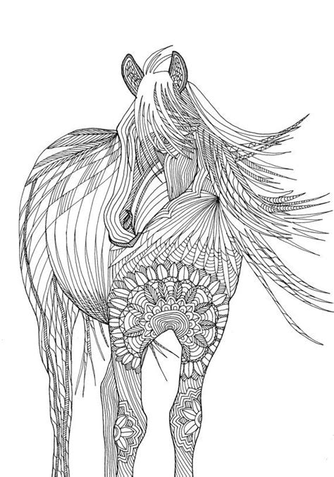 horse coloring pages for adults horse amazing animals colouring pages by joenay