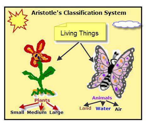 aristotle biography biology history taylore lifeprocesses
