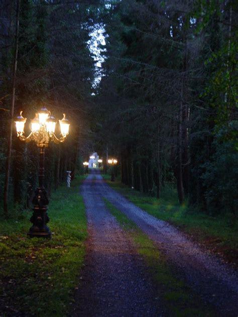 landscape lighting driveway best 25 driveways ideas on garden landscape lighting ideas best outdoor