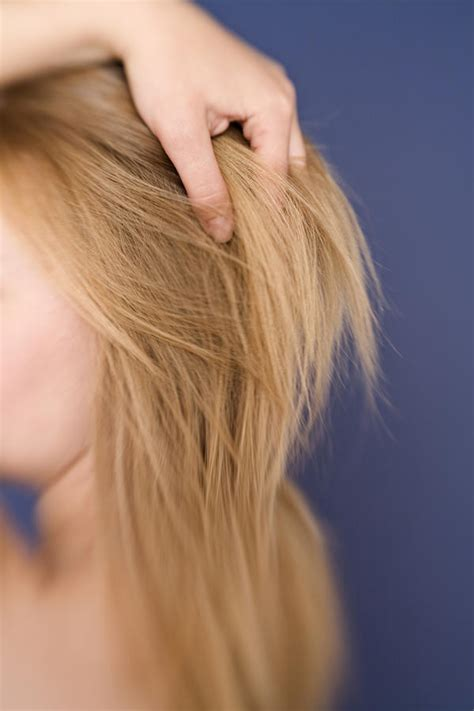 hairs hairline ingrown hairs on neck hairstylegalleries com