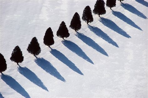 boat dealers hibbing mn alex maclean tree shadows in snow photograph for sale
