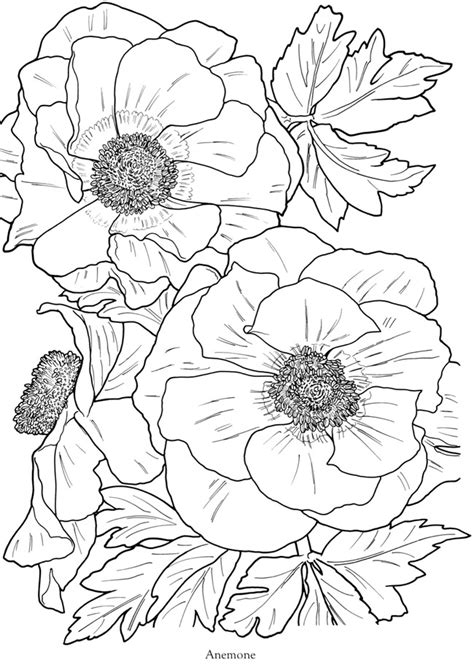 coloring book pages of flowers flowers free coloring pages