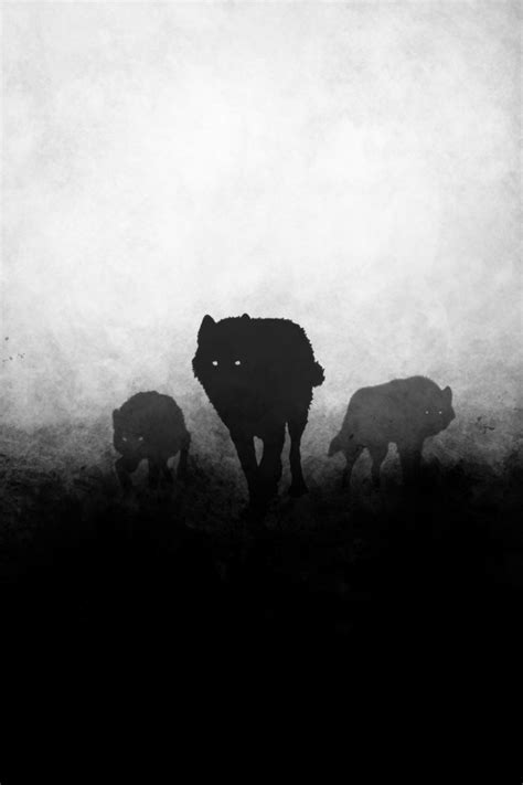 wolf and wolf wolves black and white wolf pack alpha wolf silhouettes predators the