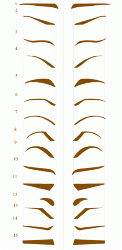 eyebrow shape template collection of beautiful eyebrow shape tips for beautiful