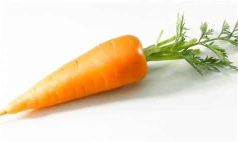 google imagenes de zanahorias msd pur 201 pero biblioteca p 250 blica quot luis murgu 237 a guill 233 n