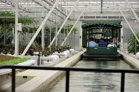 greenhouses in florida disney s epcot greenhouses are amazing part i the land